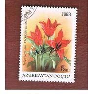 AZERBAIJAN   - SG 109 -  1993 FLOWERS: TULIPA FLORENSKYII  -   USED - Azerbaijan