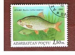 AZERBAIJAN   - SG 115 -  1993 FISHES: CASPIAN ROACH  -   USED - Azerbaïjan