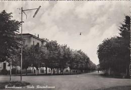 ROCCABIANCA-PARMA-VIALE RIMEMBRANZE-CARTOLINA VERA FOTOGRAFIA NON VIAGGIATA ANNO 1955-1960 - Parma