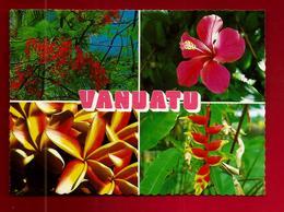 CP Océanie Vanuatu Tropical Flowers - Plantes Fleurs Fleur Poinciana Hibiscus Frangipani Bec Du Perroquet - Vanuatu