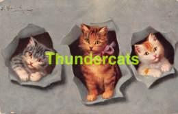 CPA ILLUSTRATEUR SPERLICH CHAT CHATS ARTIST SIGNED CAT CATS TSN 730 - Gatti