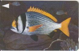 BAHRAIN(GPT) - Fish Of Bahrain/Doublebar Bream, CN : 40BAHK/B(0 Wth Barred), Used - Bahrain