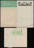 Cca 1930 Magyar-lengyel Cserkészkör 10 Db Hasznáaltlan Levélpapír és Boríték. Többféle - Scouting