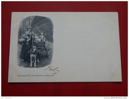 LAITIERES  - ATTELAGE -   Laitière Flamande  - Vlaamse Melkvrouw -  1905  - - Marchands Ambulants