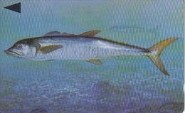 BAHRAIN(GPT) - Fish Of Bahrain/Spanish Mackerel, CN : 40BAHH/B(normal 0), Used - Bahrain