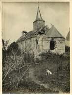 160519A - PHOTO GUERRE 1914 18 MILITARIA - 02 BUCY LE LONG Chapelle Sainte Marguerite - Chien Ruines - France