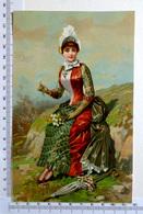 CHROMO    LITHOGRAPHIE ....GRAND FORMAT...FEMME ÉLÉGANTE CUEILLANT UN BOUQUET DE FLEURS...OMBRELLE - Old Paper
