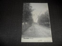 Moerbeke - Waes  Paysage  Molen  Moulin - Moerbeke-Waas