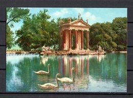 ROMA  -  VILLA  BORGHESE - IL LAGHETTO  -  Non Viaggiata - Parks & Gardens