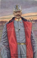 ** T1/T2 Armeekommandant G.d.K. Karl Freiherr Von Pflanzer-Baltin B.K.W.I. 163-1 - Postcards