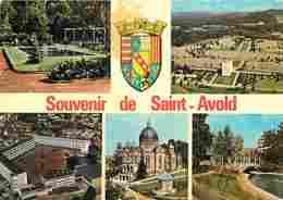 57 - Saint Avold - Multivues - Blasons - Voir Scans Recto-Verso - Saint-Avold