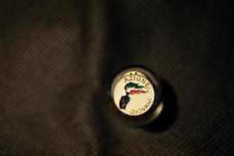 """Pin's-"""" La Fiamma Tricolore_Azione Giovani""""la Foto Non Rende La Vera Bellezza Dello Stemma Distintivo-Integro E Completo - Pin's"""