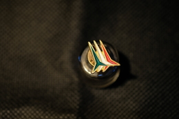 """Pin's-"""" Le Frecce Tricolori""""la Foto Non Rende La Vera Bellezza Dello Stemma Distintivo-Integro E Completo- - Pin's"""