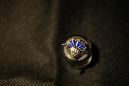 """Pin's-""""Simbolo A Ventaglio""""la Foto Non Rende La Vera Bellezza Dello Stemma Distintivo-Integro E Completo- - Badges"""
