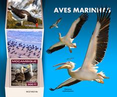 MOZAMBIQUE 2019 - Seabirds, Pelicans S/S. Official Issue - Pélicans