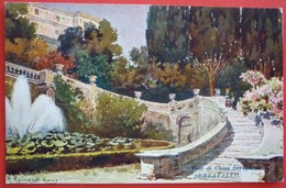 ROMA - PUBBLICITARIA , VINO DI CHINA SERRAVALLO TRIESTE BARCOLA - Parks & Gardens