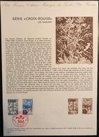 France Document - FDC - Premier Jour - Croix Rouge - YT Nº 1828 Et 1829 - 1974 - FDC