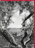 CARTOLINA NV ITALIA - BOLSENA (VT) - Veduta Dall'alto - 10 X 15 - Viterbo