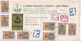 Postal History Cover: Brazil Stamps On Cover - American Indians