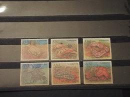 FIJI - 1993 FAUNA MARINA  6 VALORI - NUOVI(++) - Fiji (1970-...)