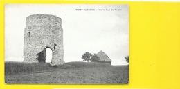 NOISY Sur OISE Vieille Tour Du Moulin (Frémont) Val D'Oise (95) - Frankreich