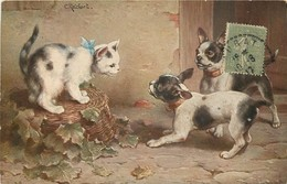 Animaux - Chats   Réf  6420 - Katten