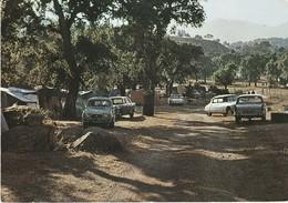 Corse Du Sud  : PORTO-VECCHIO : Le Camping - Automobiles - D.S. - Citroen - 4 L Renault ( C.p.s.m. - Grand Format ) - Autres Communes