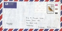 South Africa RSA 1990 Pietermaritzburg Rufous-naped Lark Mirafra Africana Meter Anker ATM EMA FRAMA Cover - Brieven En Documenten