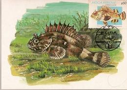 Mozambique & Maxi Card, Tropical Fish, Rascasso, Scorpaena Scrofa, Painting By Alfredo Conceição, Beira 1980 (58) - Poissons