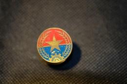 """Pin's-Spilla-""""Stella D'oro"""" Le Immagini Non Rendono La Vera Bellezza Dell'oggetto-Integro E Completo- - Badges"""