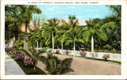 Florida Fort Myers Scene In Front Of Thomas A Edison's Estate - Fort Myers
