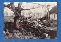Photo Ancienne - SAINT AVOLD - Installation D'un Poste / Position / Tranchée - Mars 1939 - WW2 - Casque Uniforme - War, Military