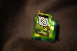 """Pin's-Spilla-""""CHAMPOLUC M.1570"""" Le Immagini Non Rendono La Vera Bellezza Dell'oggetto-Integro E Completo- - Badges"""