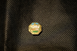 """Pin's-""""S.MARTINO Di CASTROZZA M.1444""""Le Immagini Non Rendono La Vera Bellezza Dell'oggetto-Integro E Completo - Badges"""