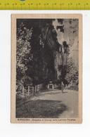 1933 SIRACUSA Orecchio Di Dionigi Nella Latomia Paradiso  FP V SEE 2 SCANS Animata - Siracusa