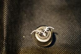 """Pin's-""""Decorativo-Originale E Bello""""Le Immagini Non Rendono La Vera Bellezza Dell'oggetto-Integro E Completo - Badges"""