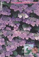 Carte Prépayée Japon - FLEUR - FLEUR - HORTENSIA Sur TIMBRE Série 13/16 - FLOWER On STAMP Japan Rainbow Card - 2466 - Timbres & Monnaies