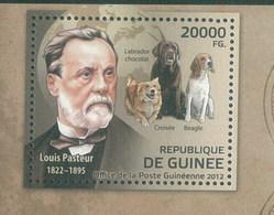 Guinea 2012 Louis Pasteur Dog Chien MNH 1V - Guinea (1958-...)