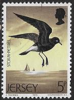 Jersey SG130 1975 Birds 5p Good/fine Used [39/32231/25D] - Jersey