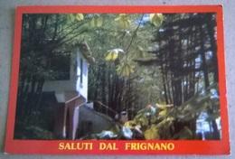 SALUTI DAL FRIGNANO   (376) - Saluti Da.../ Gruss Aus...