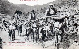 Les Pyrénées. Type De Muletiers D'Andorre. - Andorre