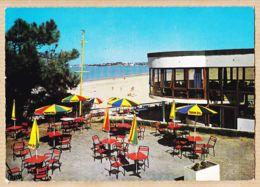 X17131 Peu Commun SAINT-GEORGES-DE-DIDONNE (17) St Le SUZAC Terrasse Bar-Restaurant 1960s PIERRON 3158 / Etat Parfait - Saint-Georges-de-Didonne