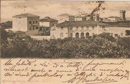(C).Castiglioncello(LI).F.to Piccolo.Viaggiata (c17) - Livorno