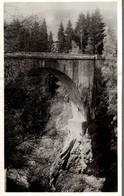 74 SAINT-GERVAIS-LES-BAINS  LE PONT DU DIABLE - Saint-Gervais-les-Bains