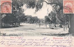 CPA Uruguay - Montevideo - Paseo Del Prado - 1902 - Uruguay