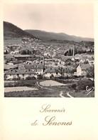 88-SENONES- VUE PARTIELLE - Senones
