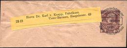 ÖSTERREICH 1910 (Okt.) 3 H. KFJ-Jub. Privat-Zeitungs-Sb., Buchdruck-VE: Mitteilungen D. Dt. U. Österr. Alpen-Vereines/WI - Postzegels
