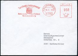 3032 FALLINGBOSTEL/ Landkreis../ Patenkreis D.Kreises/ Rummelsburg 1976 (8.3.) AFS = Dolmengrab (Steingrab) Klar Gest. I - Prehistorie