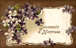 SOUVENIR D'HORRUES - Belgique