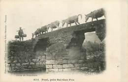 TONKIN  SUI-GAN-FOU  Pont      INDO,0103 - Viêt-Nam